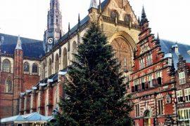 kerstboom grote markt