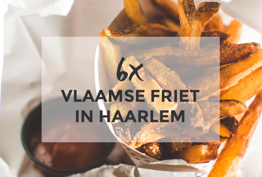 6x Vlaamse friet in Haarlem