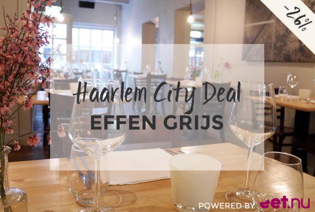 Haarlem-City-Deal-Effen-Grijs