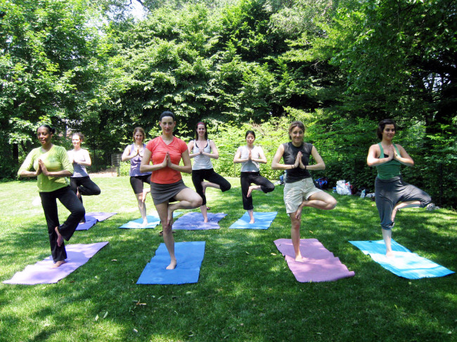 Pilates Park Haarlem