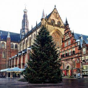 kerstboom-grote-markt
