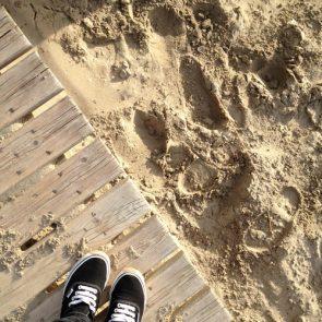 strand-schoenen